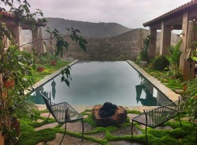 Joy Gardens Serenity Pool